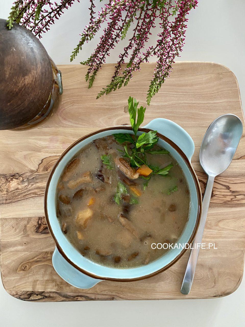 Zupa grzybowa ze świeżych grzybów - najprostszy przepis
